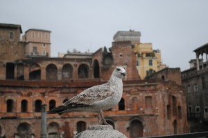 One visitor to Rome not put off by the rain