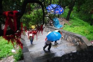 Ascending Tai Shan